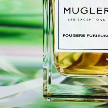 LES EXCEPTIONS - FOUGERE FURIEUSE